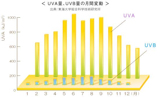 UVA UVB対策